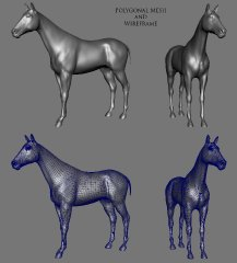 horse_mesh_wire