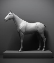 horse_mr